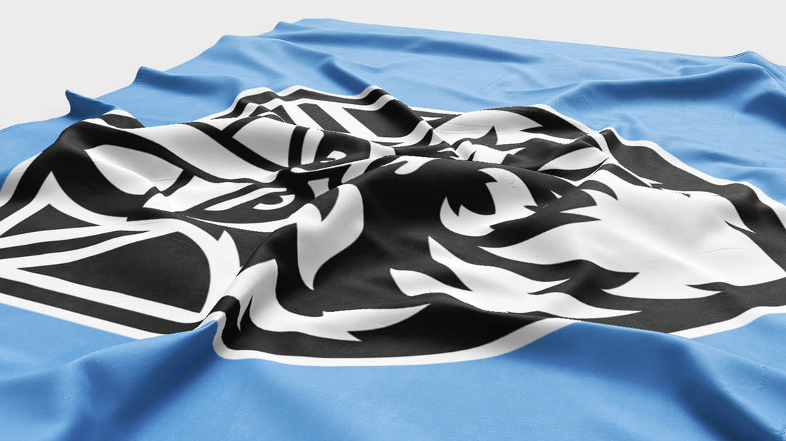 Glasgow Warriors Flag