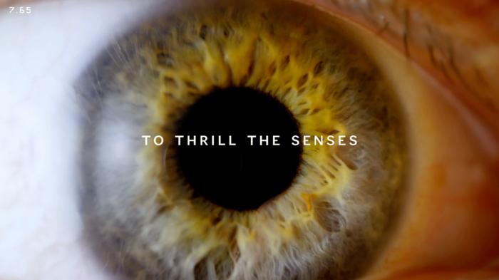 Thrill The Senses